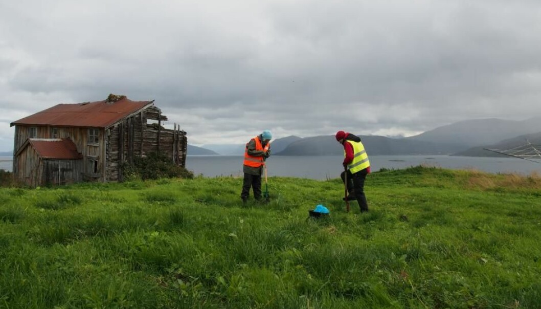 Overview of Voldstad in Troms, northern Norway. This archaeological site is one of many that are threatened by climate change, according to a new PhD thesis. (Photo: Vibeke Vandrup Martens / NIKU)