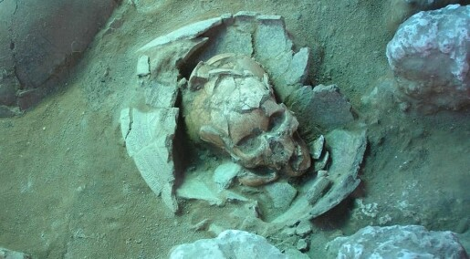Fossil DNA identifies the first seafarers in the Pacific Ocean