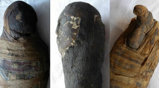See inside three Egyptian mummies