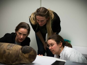 Three of the scientists study the exposed cranium on the side of the child mummy. (Photo: Kirstine Jacobsen / ScienceNordic)
