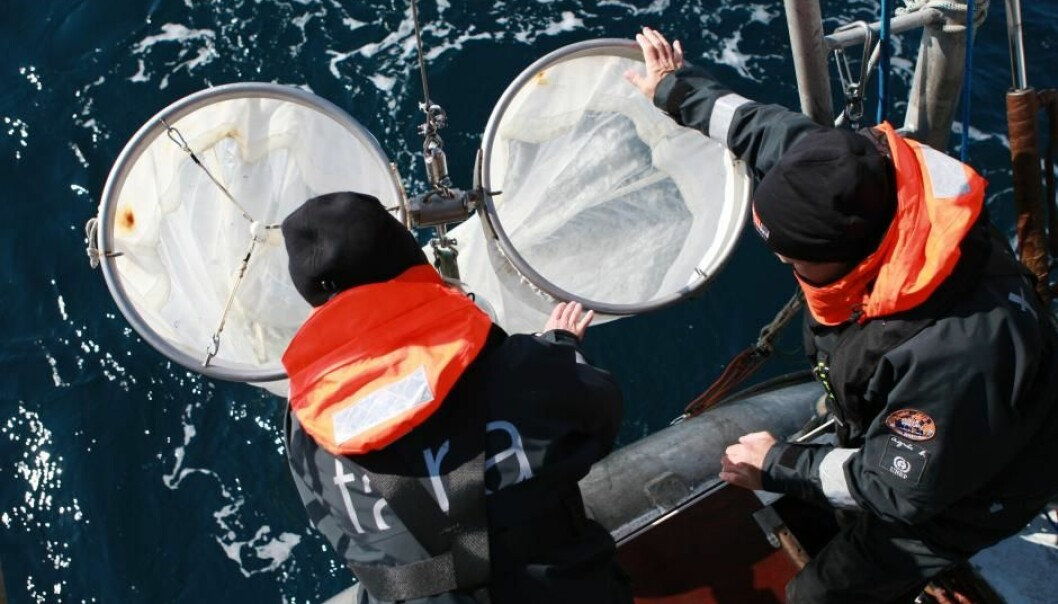 Scientists collect plankton and microplastics in the Arctic during the TARA-expedition (Photo: Anna Deniaud/ Tara Expeditions Foundation)