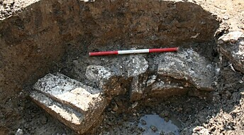 800-year-old well casts new light on medieval murder