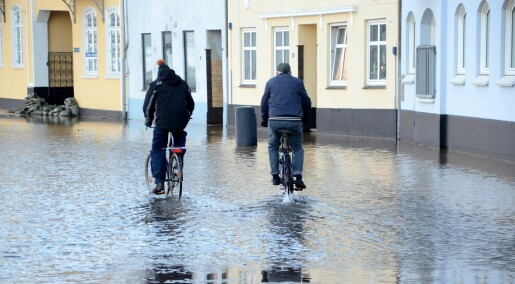 Danish Meteorological Institute has lost one third of its staff in four years