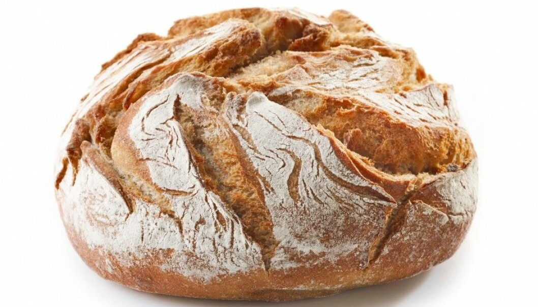 If you are young, have little education or were served highly refined white bread when you were little – then you are less likely to eat healthy whole-grained bread now. (Photo: Shutterstock/NTB scanpix)