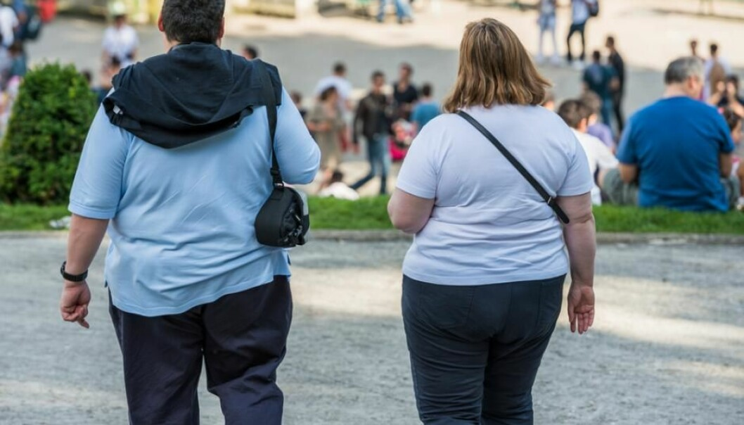An increasing number of people suffer from severe obesity. New research shows that an obesity epidemic could perhaps be halted by adjusting the composition of bacteria in the gut. (Photo: Shutterstock)