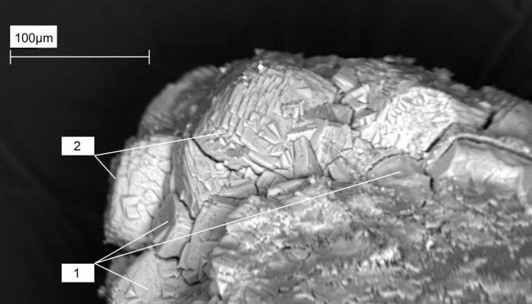 Geologists have discovered a new mineral, topsøeite, in Iceland. It is named after the family behind the Danish chemical company Haldor Topsøe. (Electromicroscope image: Anna Garavelli, University of Bari)