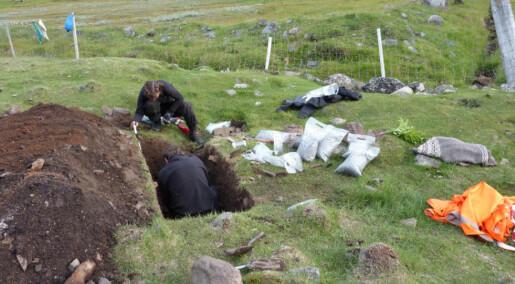 Vikings grew barley in Greenland