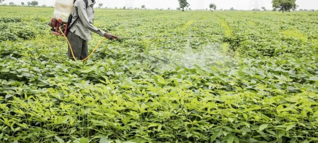 International strategy to prevent suicides from pesticide poisoning is failing
