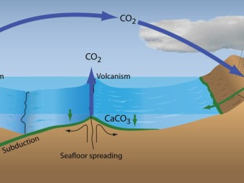 Over geological time-scales, the concentration of greenhouse gases in the atmosphere is driven by plate tectonic processes. Increased volcanism leads to increased emissions of CO2 while increased weathering during the formation of mountain ranges, removes CO2 from the atmosphere. (Illustration: Grethe Storgaard)