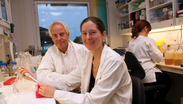 Targeted DNA vaccine uses an electric pulse