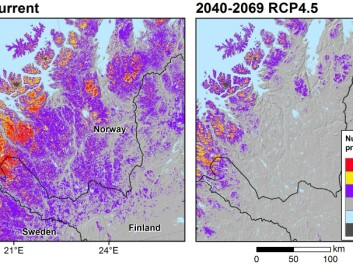 A rapid loss of cold conditions producing frost and snow related land surface processes are projected in northernmost Europe. The maps show the change in suitable conditions for these processes today (left) and in a future possible climate scenario (right). This scenario is projected for the time period of 2040-2069 and assumes a moderate emission scenario (so-called RCP4.5). (Illustration: Author provided)