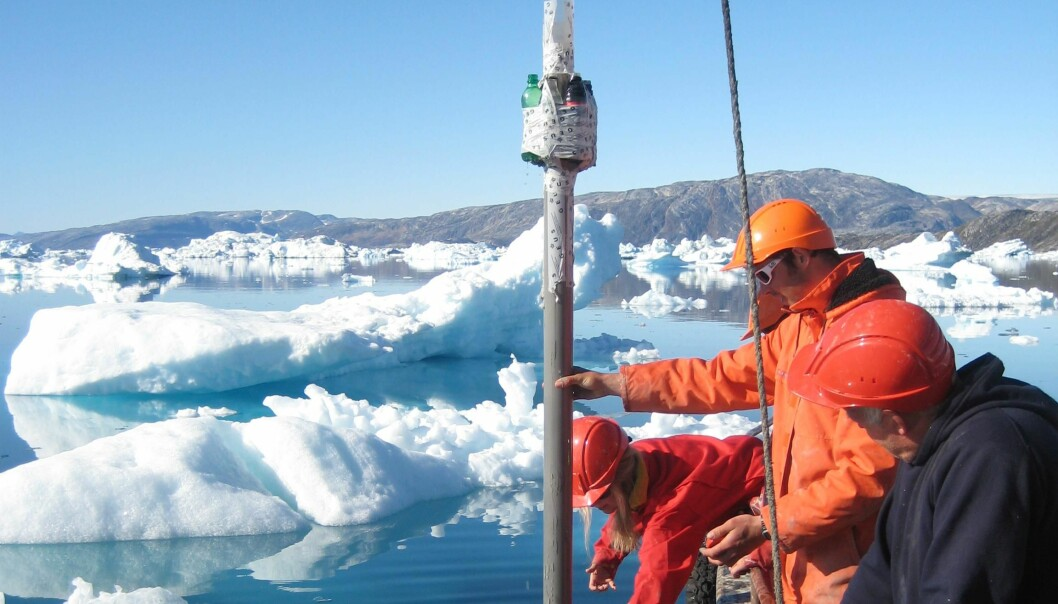 Scientists do not always need to study ice cores to reveal the history of the ice sheet. Melting ice bergs also leave sediment traces in the fjords around Greenland, which reveal how stable marine terminating glaciers have been in the past. (Photo: Robert Fausto, GEUS)