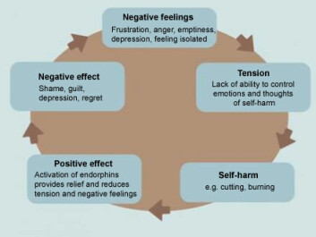 The vicious circle of self-harm.