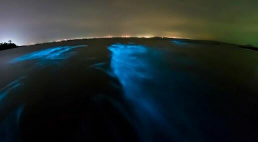 Phosphorescence aims to frighten