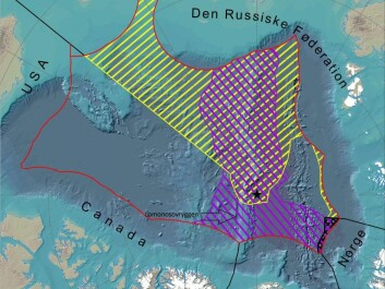 Map covering the Arctic Ocean. Purple lines mark the area claimed by the Kingdom of Denmark. Yellow stripes indicate Russia's claim. The Kingdom of Denmark's claim also overlaps with the extended continental shelf of Norway, indicated by black lines. The black star marks the North Pole. (Illustration: GEUS)