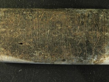 Even after the comb was carefully removed from the soil, it is tricky to distinguish the markings. The bone plate was burnt and had degraded after more than 1,000 years in the ground. It measures just 3.8 by 1.8 centimetres. (Photo: Søren Sindbæk)