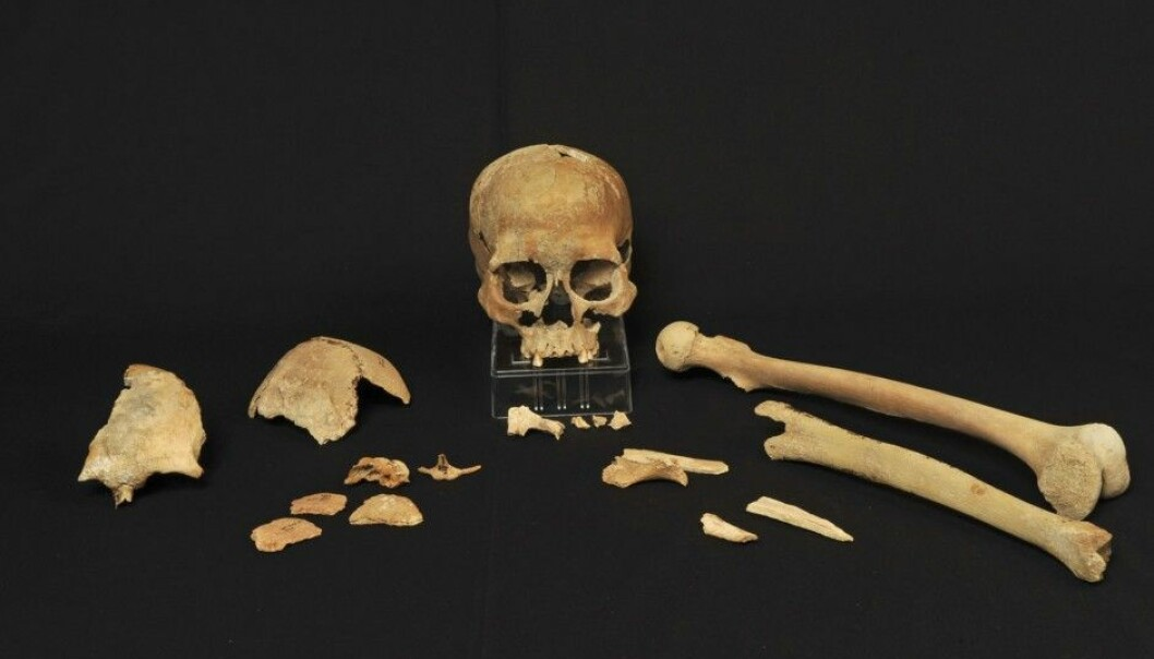 In 1994, Stone Age bones were found on the island of Hummervikholmen in the Søgne archipelago in southernmost Norway. New methods are finally available to analyse their DNA. (Photo: Beate Kjørslevik)