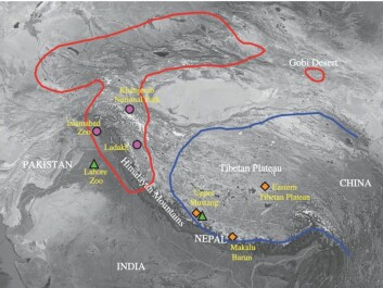 The location of bear samples from Lindqvist's study shown by circles, triangles, and diamonds. The known habitat of Tibetan brown bears and Himalayan brown bears are indicated by the blue and red lines, respectively. The two species have remained relatively isolated from each other geographically for 650,000 years. (Map: Proceedings of the Royal Society B)