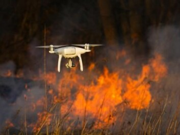 A drone flies over a forest fire to get an overview. (Photo: Shutterstock)