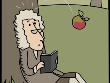 If that apple had never hit Newton's head, would we instead explain falling objects in terms of their energy and not gravity? (Illustration: Shutterstock)