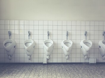 Your pelvic floor muscles are the muscles you use to control the flow of urine as you urinate. (Photo: Pexels)