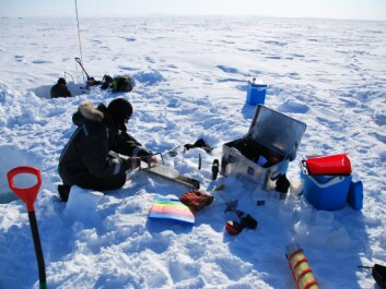 The scientists set up their laboratory on the ice in North-East Greenland, where temperatures can reach minus 20 degrees Centigrade in May. (Photo: Kasper Hancke)