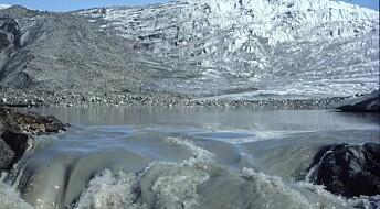Can Greenlandic mud help feed the world?