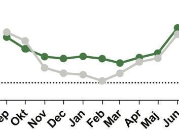 Gaps between stones in the tidal zone create a protected environment for mussels. Here, temperatures (green line) are many degrees warmer than the surrounding air (grey line) in winter. (Credit: Thyrring et al. (2017))