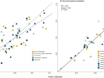 Correlation coefficients for all field and laboratory flies. Trait types are categorised into: tolerance traits, body composition, and life history. The left panel (A) plots correlation between all 12 traits for all species, and shows that time in the laboratory may dampen, but does not negate, the relationship between traits. The right panel (B) plots correlation between traits and environmental variables. The high correlations demonstrate that laboratory maintenance does not erode this association. (Graph: Maclean et al. 2018 / Author provided)