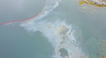 Can nature clean up oil spills in the Arctic?