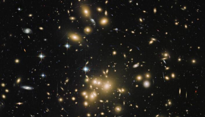 What's the (dark) matter?
