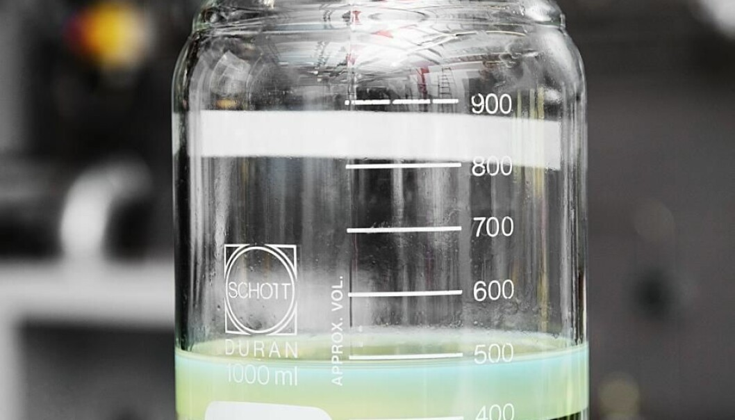 Separation of water (lower layer) and bio-oil. A new technique could lead to greener transport. (Photo: Thorkild Christensen)