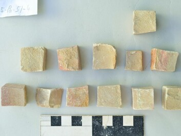 Some of the mosaic tiles recovered from Gerasa (Photo: The Danish-German Jerash Northwest Quarter Project).