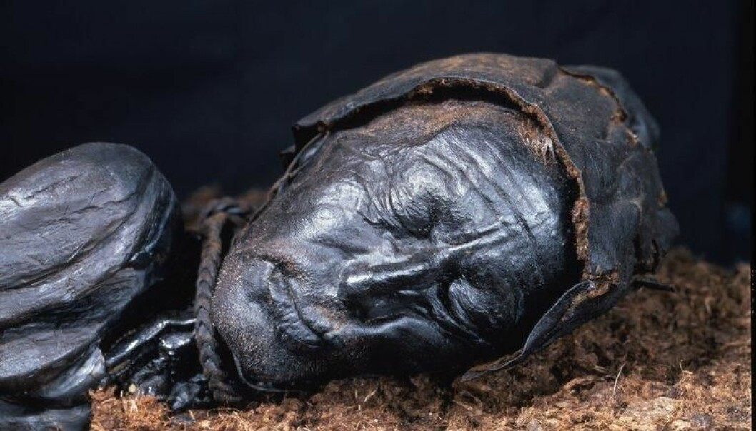 Scientists have re-examined the bog bodies of Denmark, like Tollund Man shown here. (Photo: Museum Silkeborg)