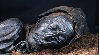 No evidence that Danish bog bodies were gay