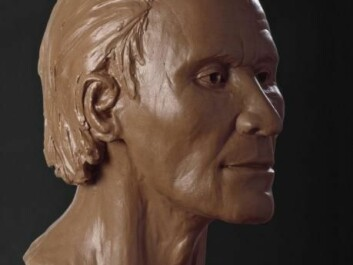 A reconstruction of Grauballe Man based on CT scans and 3D models. (Photo: Rógvi N. Johansen, Moesgaard)