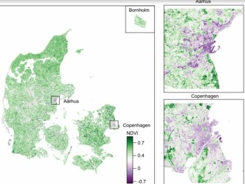 Distribution of vegetation in Denmark indicated by an NDV-index. Lower values (purple shading) indicate less vegetation, and higher values (green shading) indicates more vegetation. Vegetation is especially sparse in Copenhagen and Aarhus. (Illustration: Engemann et al. 2018)