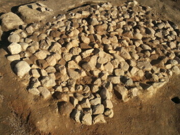 Bildetekst: This is the excavated kiln in southern Sweden where the barley grains were found. (Picture: Mikael Larsson)