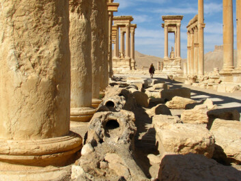 "The remarkably well preserved remains of Palmyra have recently undergone major destruction due to the current conflict in Syria, but the site remains one of the best-known urban settlements in the Roman East.  (Photo: <a href=""http://users.unimi.it/progettopalmira/pages/progetto.html"" target=""_blank"" >PAL.M.A.I.S. project</a>)"