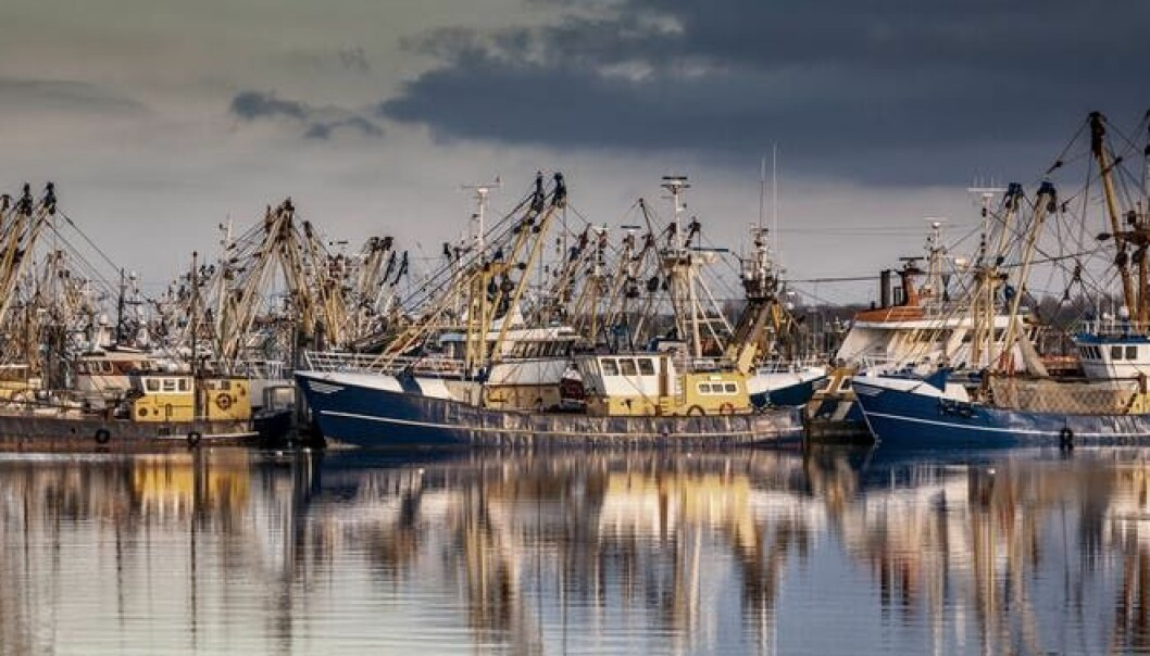 Fishing ships in Lauwersoog, The Netherlands. (Photo: Rudmer Zwerver/Shutterstock)