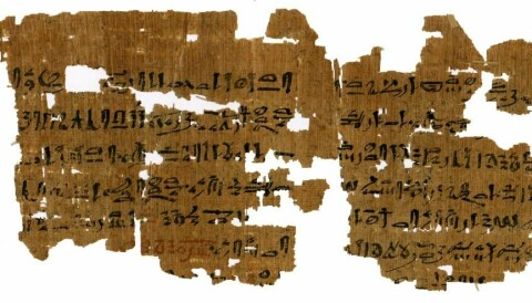 Unpublished Egyptian texts reveal new insights into ancient