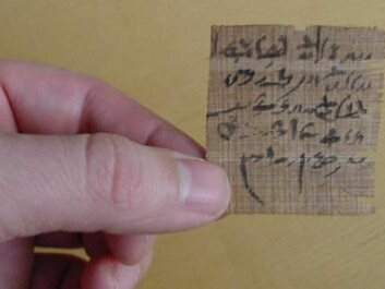 This little piece of papyrus is believed to contain a type of oracle question. The author has written two possible outcomes for a situation and asked the gods to indicate which one was the truth. (Photo: The Papyrus Carlsberg Collection/ University of Copenhagen)