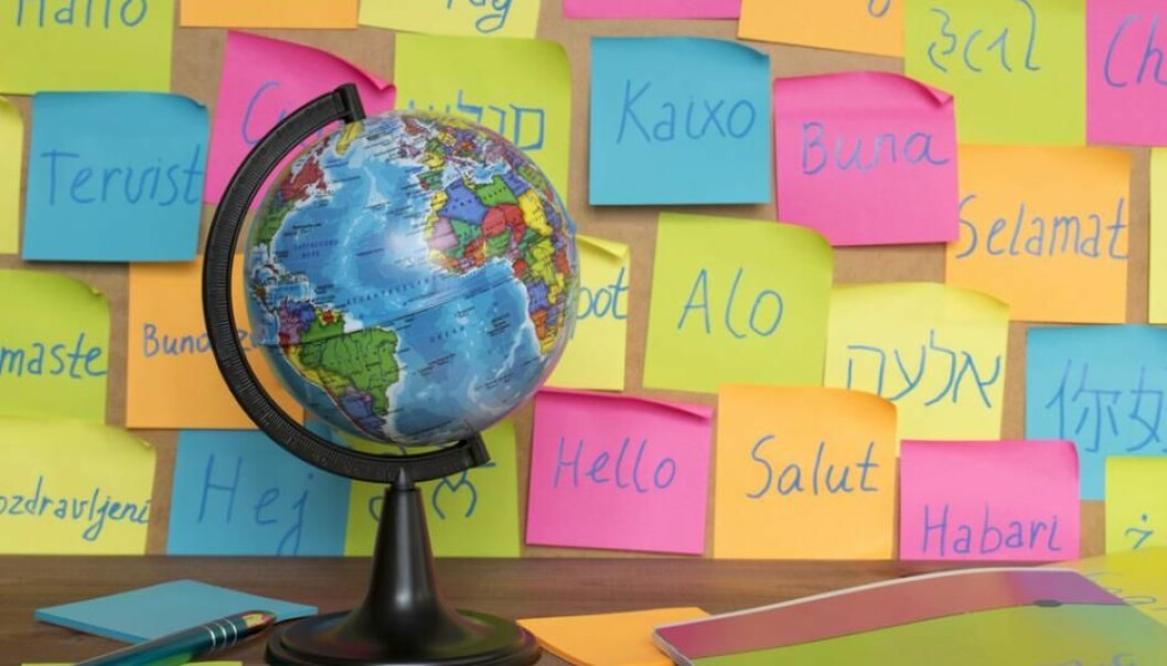If every country on Earth spoke just one language, there would be 193 languages spoken today. But there are actually 8,475 and counting. (Photo: Shutterstock)