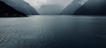 Scientists want to make holes in Norwegian fjords
