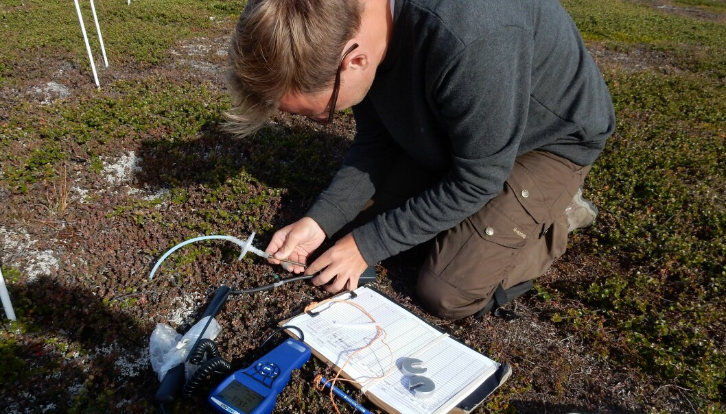 Magnus Kramshøj takes soil gas measurements at a field site on Disko Island, West Greenland. (Photo: Klaus Kramshøj)