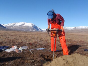 It takes a bit of digging to reach permafrost. Then comes the tough part when frozen soil core samples are drilled out of the permafrost. Zackenberg, North-East Greenland. (Photo: Mats Björkman)
