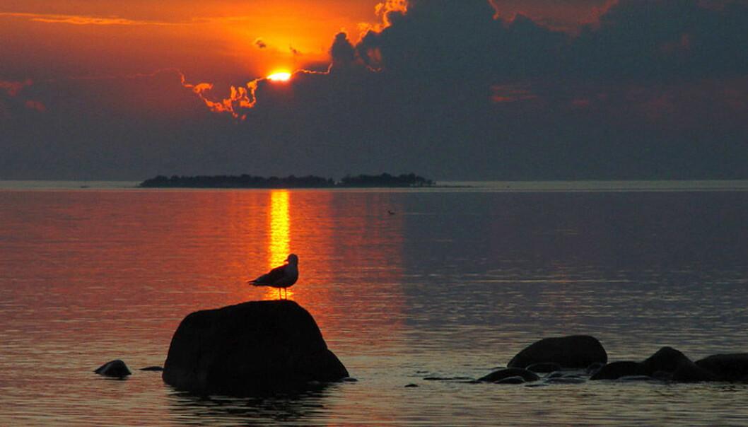 Sunset over Lake Vättern. (Photo: Jürgen Howaldt, Wikimedia Commons)
