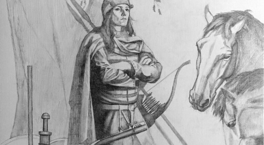 Warrior buried in a Swedish Viking grave was actually female