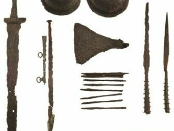 The weapons found in the grave, including swords, shields and 25 arrows. (Picture: Christer Åhlin, Swedish History Museum / Antiquity 2019)