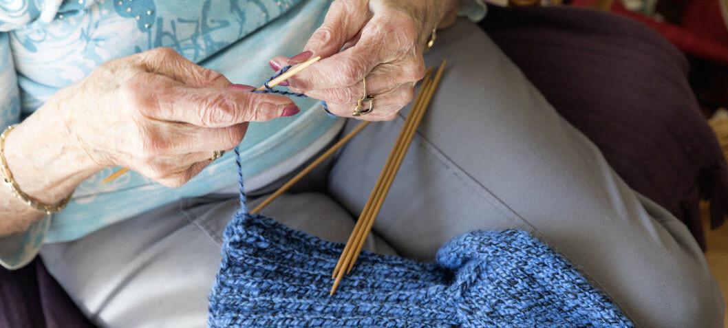 Crosswords, knitting and gardening lower the risk of Alzheimer's